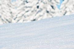 Bosque del invierno de la montaña fotografía de archivo libre de regalías