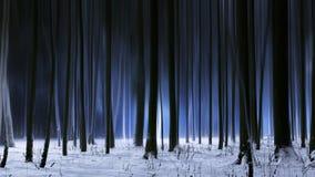 Bosque del invierno de la nieve en la noche oscura fotos de archivo