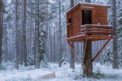 Bosque del invierno en Finlandia, Europa Foto de archivo libre de regalías