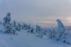 Bosque del invierno en Finlandia septentrional Foto de archivo