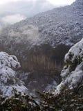 Bosque del invierno en las montañas de los Cárpatos Foto de archivo libre de regalías