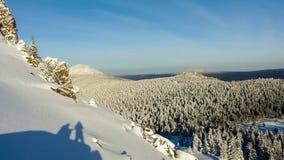 Bosque del invierno en montañas Imagen de archivo libre de regalías