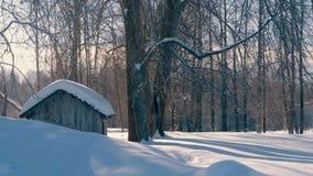 Bosque del invierno en nevadas de una escarcha Pequeña casa de madera Fotografía de archivo libre de regalías