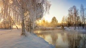 Bosque del invierno Nevado con los arbustos y los árboles de abedul en los bancos del río con la niebla, Rusia, los Urales, enero Imagen de archivo