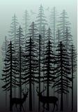 Bosque del invierno, vector ilustración del vector
