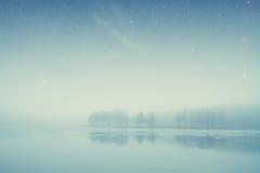 Bosque del lago night Foto de archivo libre de regalías