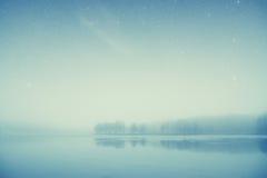 Bosque del lago night Fotografía de archivo
