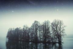 Bosque del lago night Imagen de archivo libre de regalías