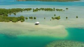 Bosque del mangle en un arrecife de coral Filipinas, Palawan almacen de video