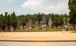 Bosque del monasterio de Shaolin de la pagoda Imagen de archivo libre de regalías