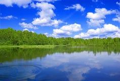 Bosque del nad del lago. Fotografía de archivo
