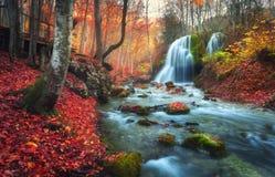 Bosque del otoño con la cascada en el río de la montaña en la puesta del sol imágenes de archivo libres de regalías