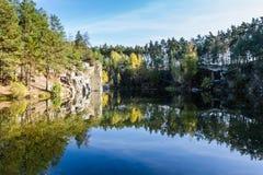 Bosque del otoño de la reflexión en un lago del bosque Imagen de archivo