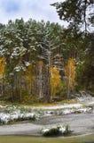 Bosque del otoño en la colina y el río Fotos de archivo