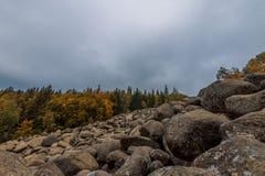 Bosque del otoño en la ladera Naturaleza hermosa Imágenes de archivo libres de regalías