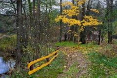 Bosque del otoño en las cercanías de la ciudad Imágenes de archivo libres de regalías