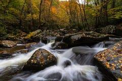 Bosque del otoño en parque de estado de la montaña fotografía de archivo libre de regalías