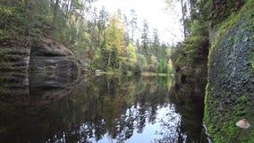 Bosque del otoño reflejado en agua del espejo almacen de video