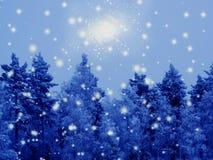 Bosque del paisaje del invierno en helada de la nieve en la noche de la Navidad Foto de archivo