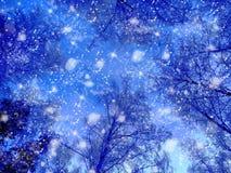 Bosque del paisaje del invierno en helada de la nieve con los haces luminosos soleados Imagen de archivo