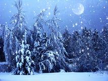 Bosque del paisaje del invierno en helada de la nieve con la luna Foto de archivo libre de regalías