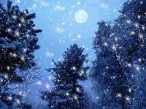 Bosque del paisaje del invierno en helada de la nieve con la luna y las estrellas Imágenes de archivo libres de regalías