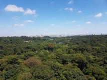 Bosque del parque zoológico Fotos de archivo
