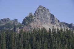 Bosque del pico de montaña fotos de archivo