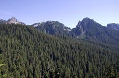 Bosque del pico de montaña fotografía de archivo libre de regalías