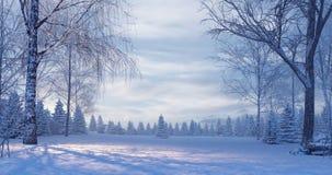 Bosque del pino en la noche de niebla del invierno foto de archivo