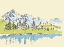 Bosque del pino en las montañas ilustración del vector
