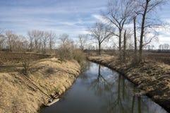 Bosque del stran de Nemosicka en finales invierno, luz del sol en ramas, manera en sorprender el área natural, río Fotos de archivo libres de regalías