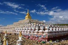 Bosque del stupa en la universidad de Yaqing Buda Foto de archivo
