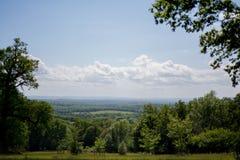 Bosque del valle verde Imagen de archivo