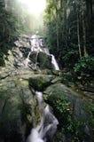 bosque del verde de la imagen del foco cascada tropical hermosa que cae abajo de la montaña Foto de archivo