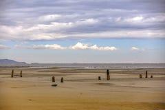 Bosque dentado en la orilla del Great Salt Lake imagen de archivo