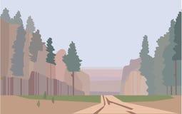 Bosque, el paisaje duro del parque nacional imágenes de archivo libres de regalías
