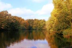 Bosque en caída alrededor de un lago Imágenes de archivo libres de regalías
