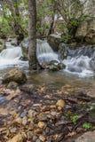 Bosque en el otoño con las pequeñas cascadas de la cala Fotografía de archivo