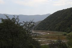 Bosque en la alta montaña en Georgia foto de archivo