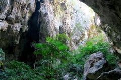 Bosque en la cueva de Phraya Nakhon Foto de archivo