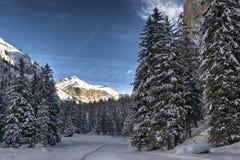 Bosque en la montaña, Vallunga - Dolomiti Nevado Fotos de archivo