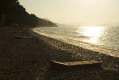 Bosque en la playa por puesta del sol Imagen de archivo