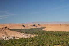 Bosque enorme da palma no vale de Ziz, Marrocos Silhueta do homem de neg?cio Cowering fotos de stock