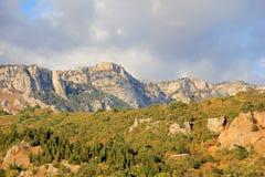 Bosque espacioso de la montaña y cielo nublado foto de archivo