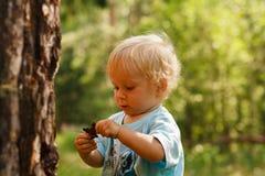 Bosque exporing del bebé Imágenes de archivo libres de regalías
