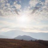 Bosque hermoso del otoño Fotografía de archivo libre de regalías