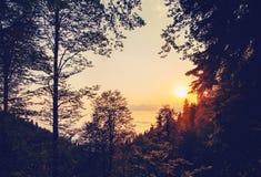 Bosque hermoso del paisaje de la puesta del sol en montañas sobre las nubes Foto de archivo libre de regalías