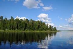 Bosque hermoso en el borde del lago Fotos de archivo