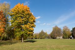 Bosque hermoso en otoño con los árboles coloridos en un día soleado S fotografía de archivo